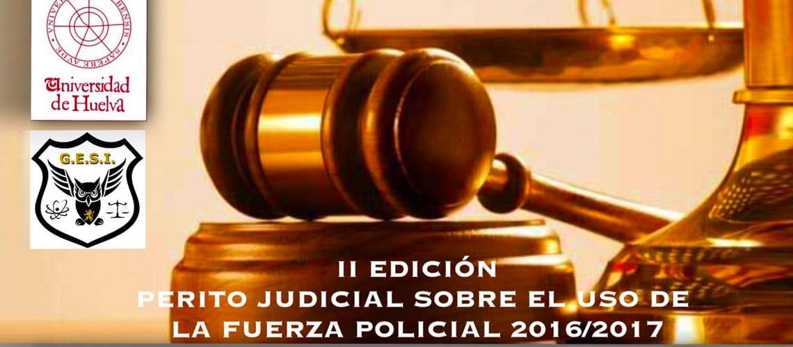 II Edición Experto en pericias judiciales sobre el uso de la fuerza policial